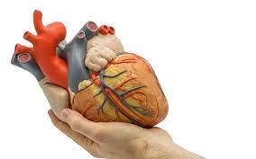 Heart Hole Sign
